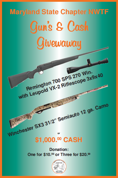 2015 Guns and Cash Give Away